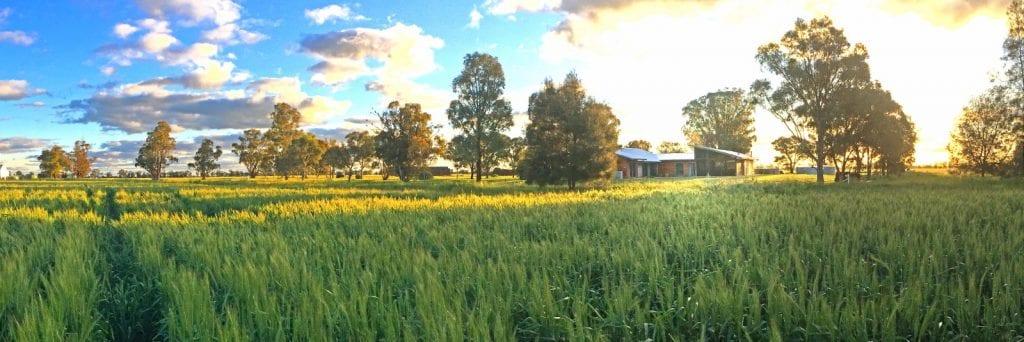 rural home design